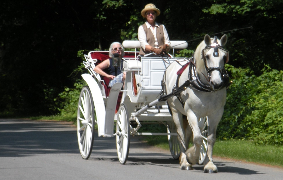 Country Carriage Ride