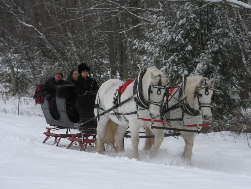 2016 sleigh ride in Greenfield Center