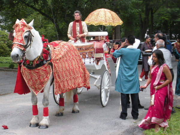 Decorated horse on carriage